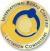 logo IBLCE